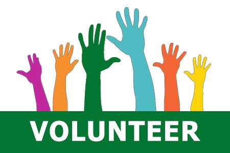 2013 Volunteer Workbook